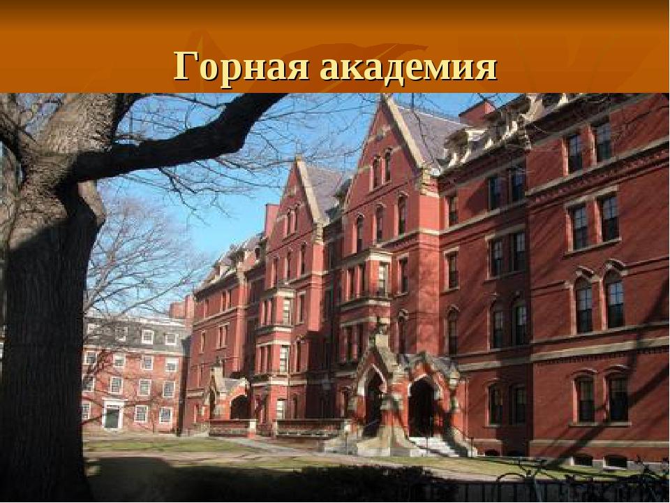 Горная академия