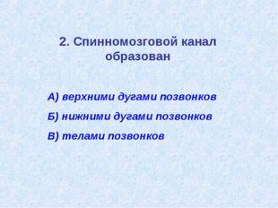2. Спинномозговой канал образован А) верхними дугами позвонков Б) нижними дуг