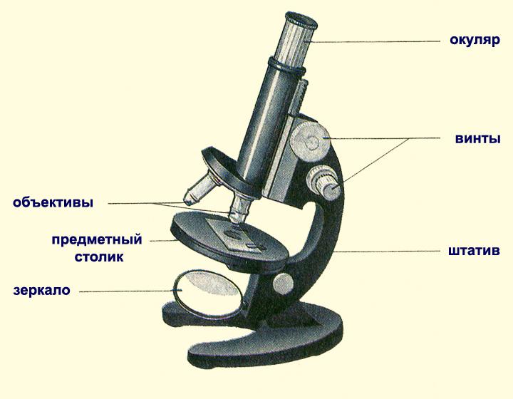 из чего состоит механическая часть микроскопа