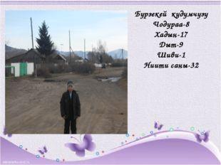 Бурзекей кудумчузу Чодураа-8 Хадын-17 Дыт-9 Шиви-1 Ниити саны-32