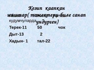 Кезип каапкан ыяштар( тожектери-биле санап ундурген) Аныяк Ленина Арткан куду