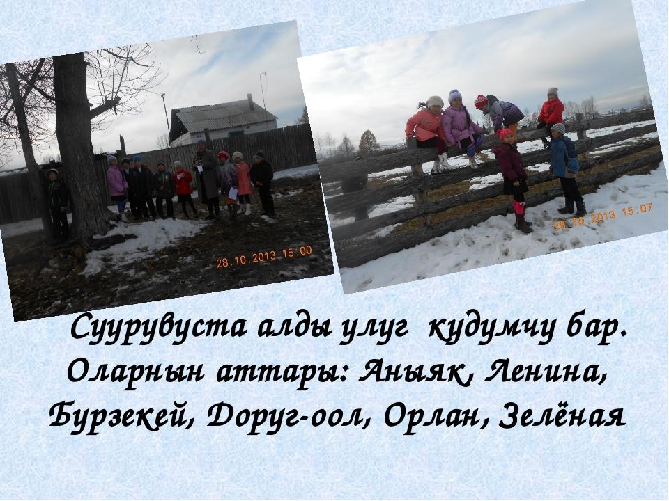 Суурувуста алды улуг кудумчу бар. Оларнын аттары: Аныяк, Ленина, Бурзекей, Д...
