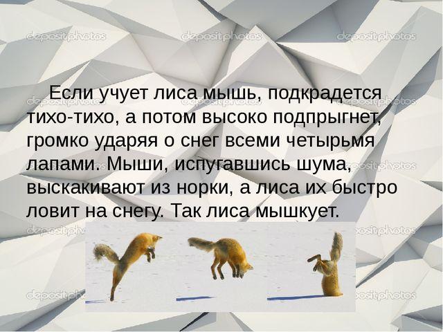 Если учует лиса мышь, подкрадется тихо-тихо, а потом высоко подпрыгнет, гром...