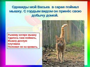 Рыжему котяре мышку Удалось таки поймать, Мышку дохлую плутишка Положил он на
