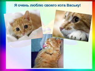 Я очень люблю своего кота Ваську!