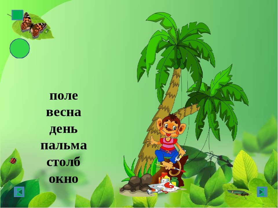 поле весна день пальма столб окно ж.р. -а, -я м.р. - □ с.р. -о, -е