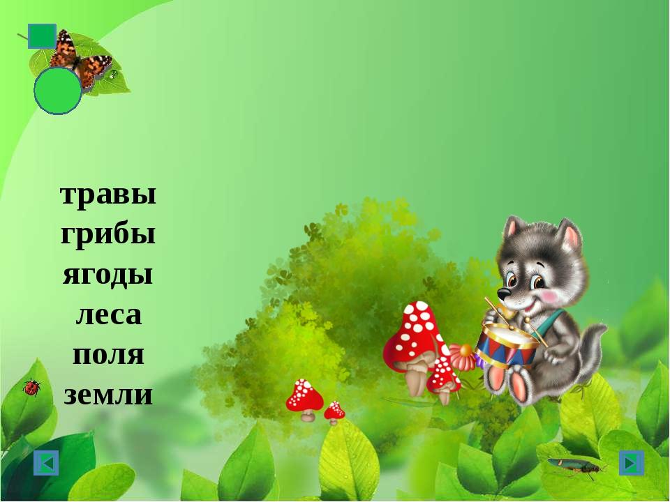 травы грибы ягоды леса поля земли зимы – зима парки – парк слова - слово
