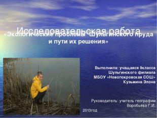 Исследовательская работа «Экологические проблемы Шульгинского пруда и пути и