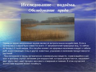Исследование водоёма. Обследование пруда Одним из видов загрязнения прудов яв