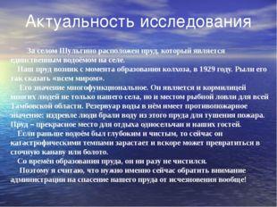 Актуальность исследования За селом Шульгино расположен пруд, который является