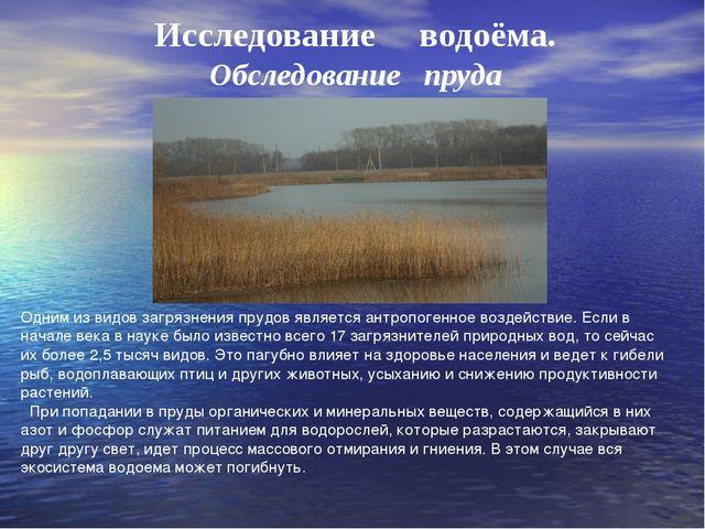 Исследование водоёма. Обследование пруда Одним из видов загрязнения прудов яв...
