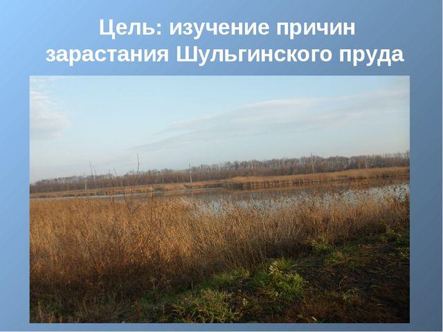Цель: изучение причин зарастания Шульгинского пруда