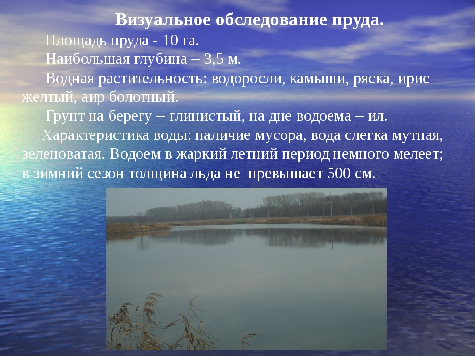 Визуальное обследование пруда. Площадь пруда - 10 га. Наибольшая глубина – 3,...
