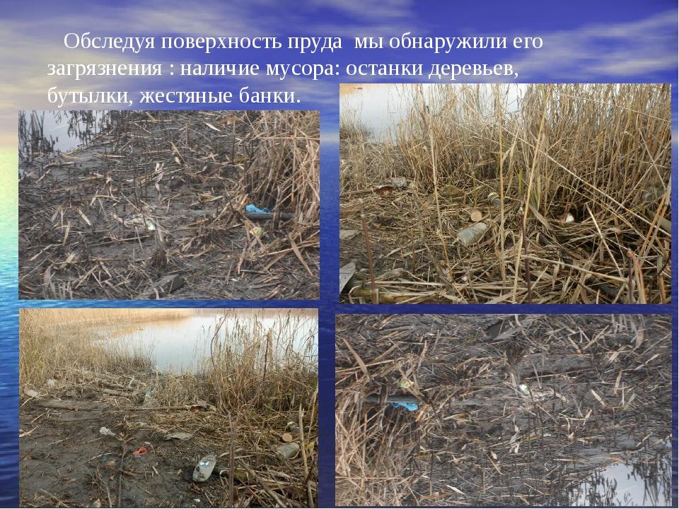 Обследуя поверхность пруда мы обнаружили его загрязнения : наличие мусора: ос...