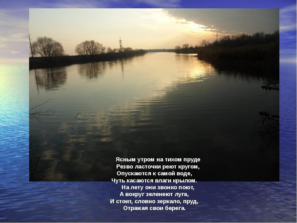 Ясным утром на тихом пруде Резво ласточки реют кругом, Опускаются к самой вод...