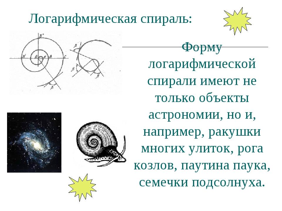 Логарифмическая спираль: Форму логарифмической спирали имеют не только объект...