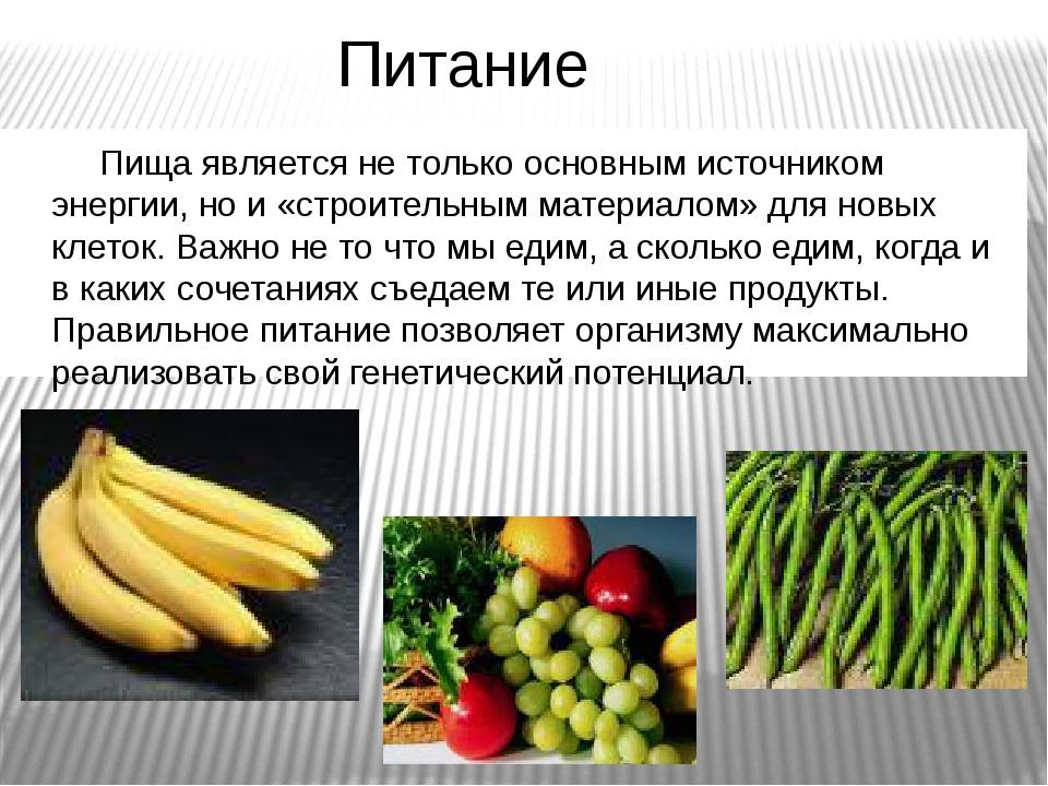 Питание Пища является не только основным источником энергии, но и «строительн...