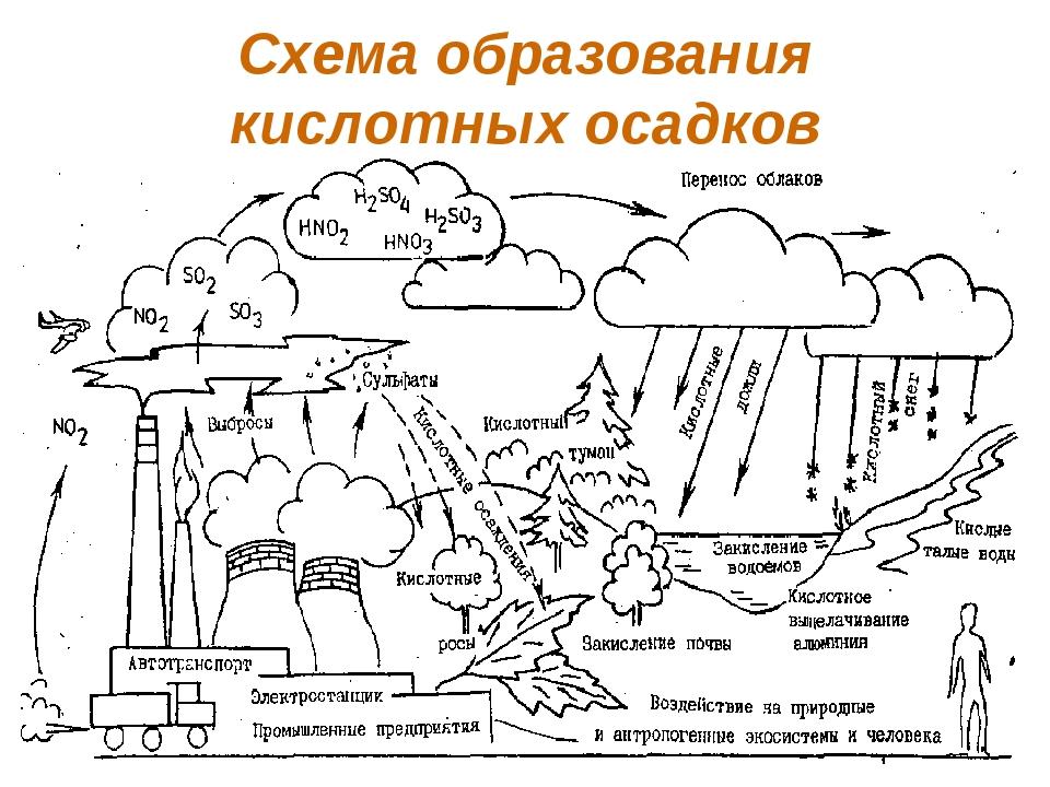 Схема образования кислотных осадков