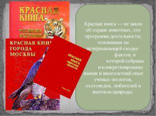 Красная книга — не закон об охране животных, это программа деятельности, осн