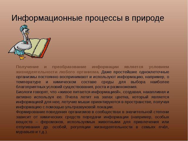 Информационные процессы в природе Получение и преобразование информации являе...