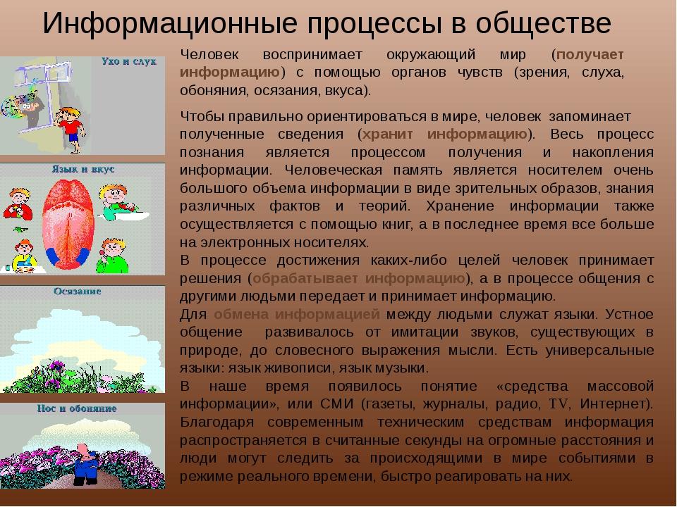 Информационные процессы в обществе Человек воспринимает окружающий мир (получ...
