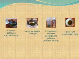 К укропу добавили этиловый спирт Укроп нагревали 3 минуты К спиртовой вытяжке