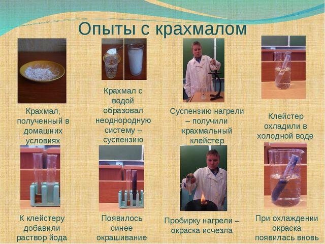 Опыты с крахмалом Крахмал, полученный в домашних условиях Крахмал с водой об...