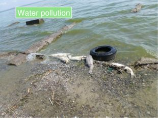 Water pollution Water pollution