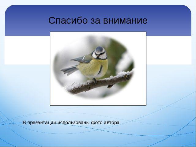 Спасибо за внимание В презентации использованы фото автора