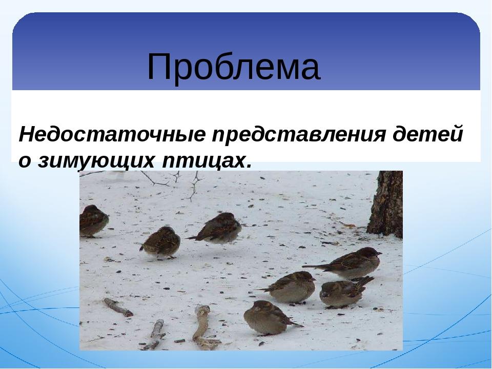 Проблема Недостаточные представления детей о зимующих птицах.