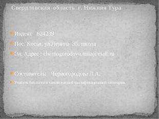 Свердловская область г. Нижняя Тура Индекс 624239 Пос. Косья, ул.Ленина 35,