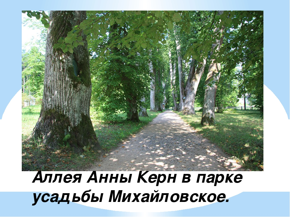 Аллея Анны Керн в парке усадьбы Михайловское.