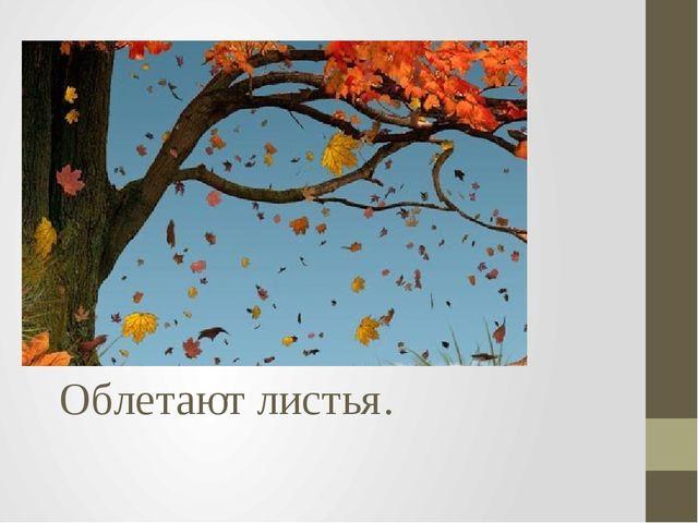 Облетают листья.