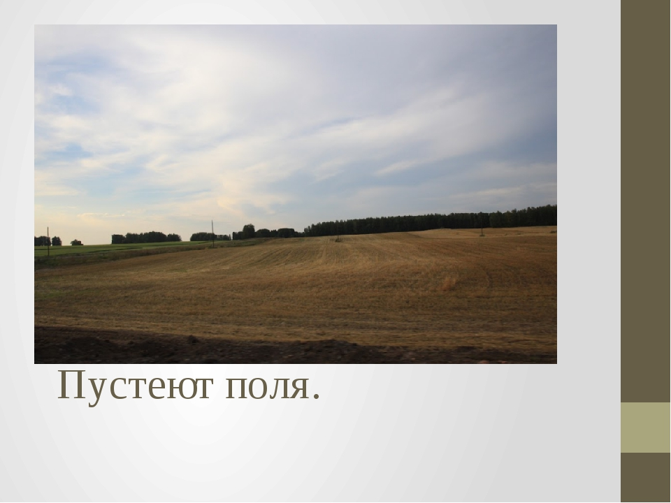Пустеют поля.