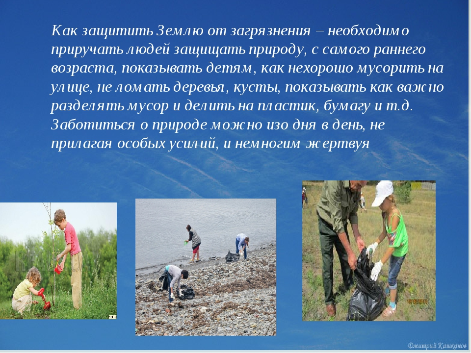 Как защитить Землю от загрязнения – необходимо приручать людей защищать прир...