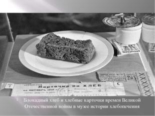 Блокадный хлеб и хлебные карточки времен Великой Отечественной войны в музее