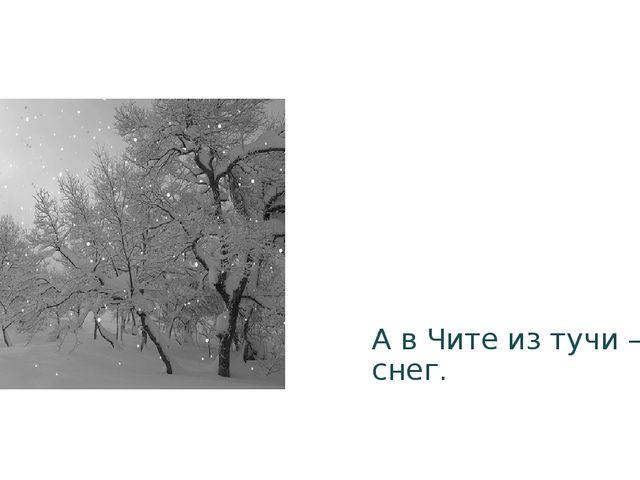 А в Чите из тучи – снег.