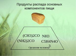 Продукты распада основных компонентов пищи C5H4N4O3 NH3 (NH2)2CO (CH3)2CO Орг