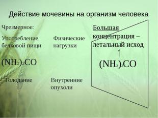 Действие мочевины на организм человека (NH2)2CO (NH2)2CO Большая концентрация