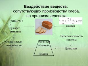 Воздействие веществ, сопутствующих производству хлеба, на организм человека (