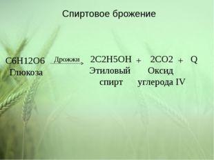 C6H12O6 Глюкоза 2C2H5OH Этиловый спирт 2CO2 Оксид углерода IV Q + + Дрожжи Сп