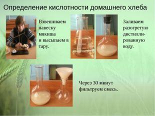 Определение кислотности домашнего хлеба Взвешиваем навеску мякиша и высыпаем