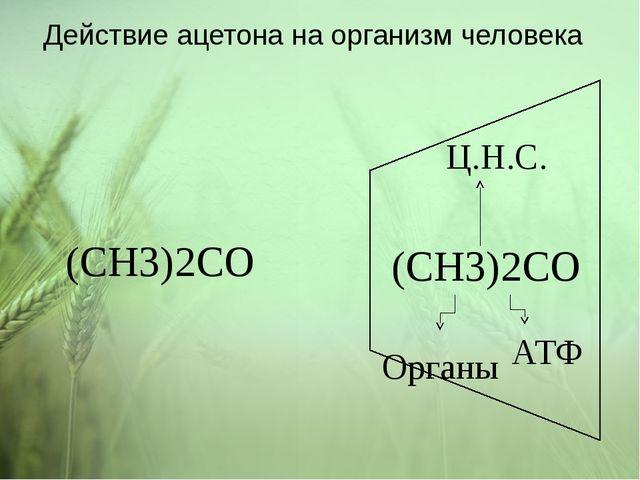Действие ацетона на организм человека (CH3)2CO АТФ Ц.Н.С. Органы (CH3)2CO