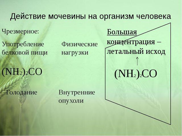 Действие мочевины на организм человека (NH2)2CO (NH2)2CO Большая концентрация...