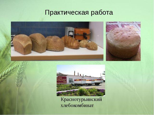 Практическая работа Краснотурьинский хлебокомбинат