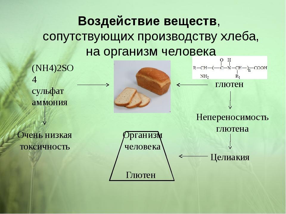 Воздействие веществ, сопутствующих производству хлеба, на организм человека (...