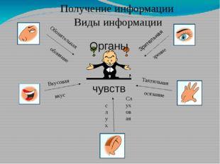 Получение информации Органы чувств обоняние вкус слух осязание зрение Зритель