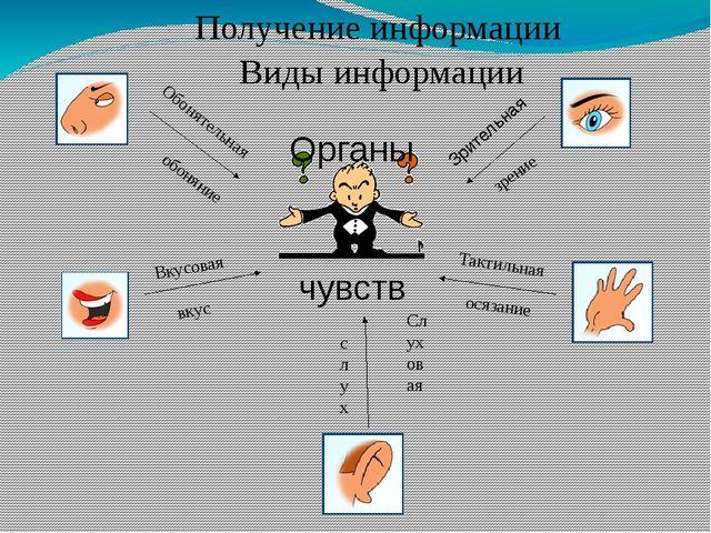 Получение информации Органы чувств обоняние вкус слух осязание зрение Зритель...
