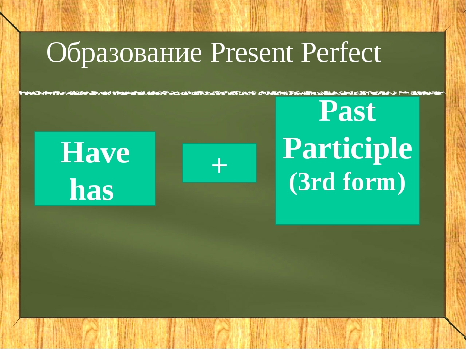 Match the 1st and the 3rd forms of the verbs drink fall be forget speak build...