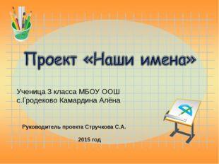 Ученица 3 класса МБОУ ООШ с.Гродеково Камардина Алёна Руководитель проекта Ст